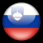 перевод с словенского